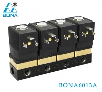 Vacuum packaging machine -BONA6013A